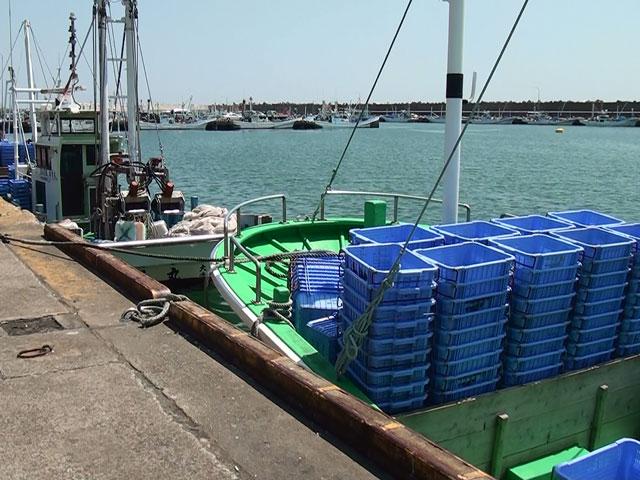 茨城の特産品 魚政のしらす 大洗港