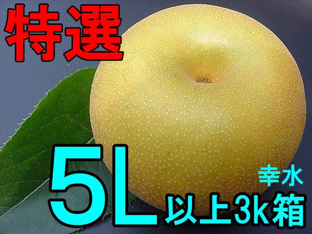 特選3L梨(幸水/豊水/新高/新興)