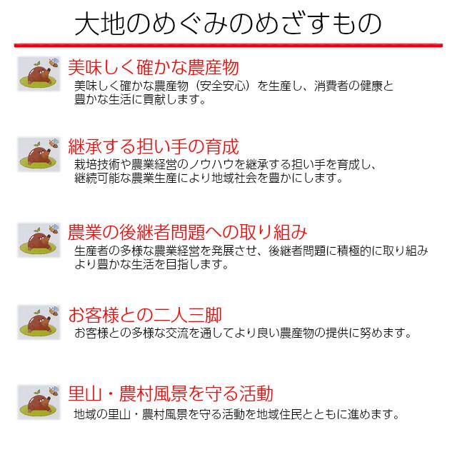 山崎さんちの新鮮で甘いスイカ,ギフトに最適,のし,ラッピング,メッセージカード
