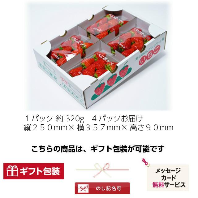 小橋さんちの新鮮で甘いイチゴ,ギフトに最適,のし,ラッピング,メッセージカード