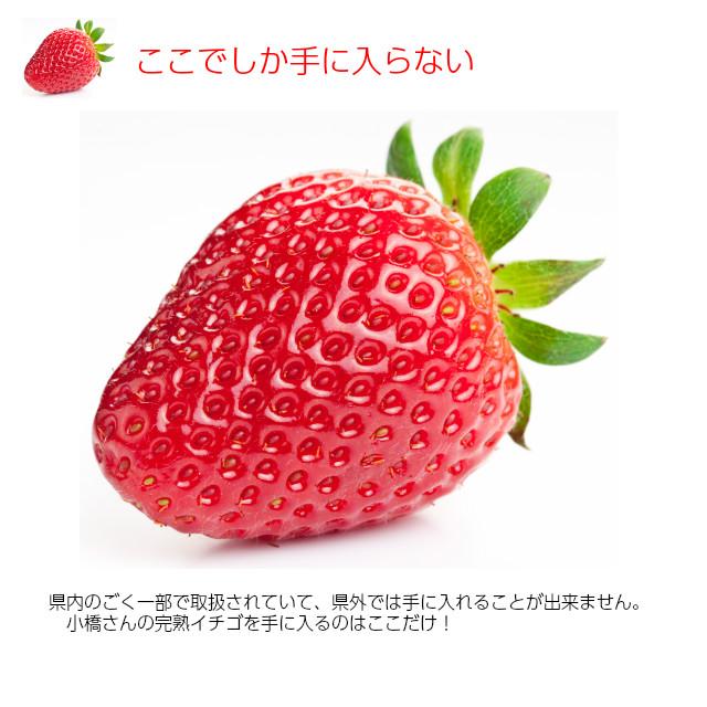 小橋さんちの新鮮で甘いイチゴ、県内のごく一部で取扱されていて、県外では手に入れることが出来ません。