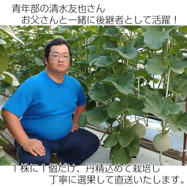 青年部の清水友也さん、お父さんと一緒に後継者として活躍,アールスメロン,メロン,めろん