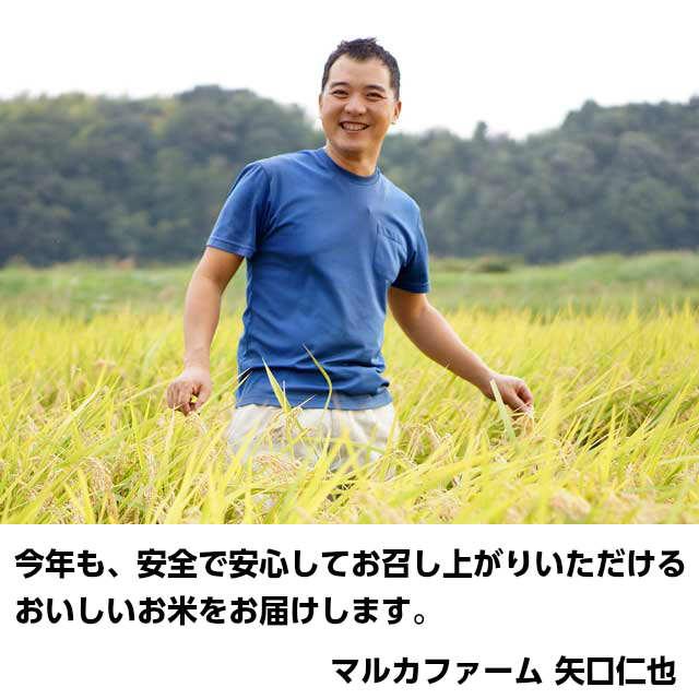 今年も、安全でおいしいお米をお届けします,米,こしひかり,コシヒカリ,茨城,ギフト