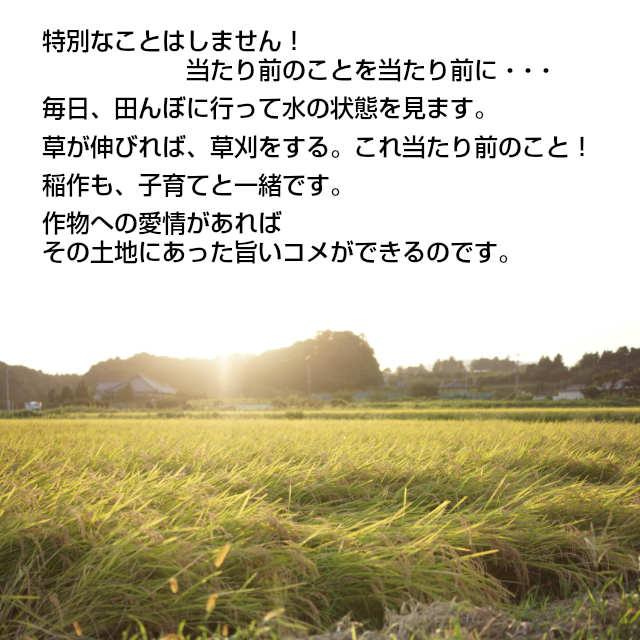 米つくり,特別なことはしません。当たり前のことを当たり前にしているだけ,毎日、田んぼへ水の状態を見に行きます。草が伸びれば草刈りをする。これ当たり前のこと。稲作も子育てと一緒です。作物への愛情があればその土地にあった旨いコメができるのです。