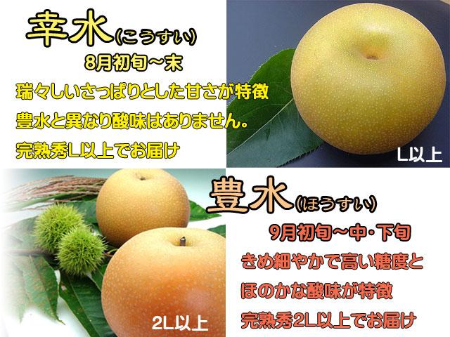 幸水/豊水/新高/新興/特徴