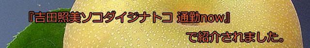 幸水/豊水/新高/新興