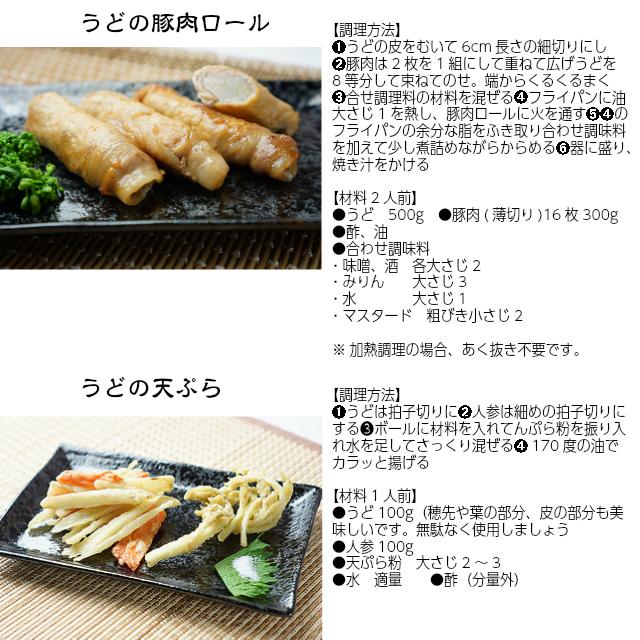 うどの豚肉ロール,うどの天ぷら,うどの美味しい食べ方,うど,独活,筑波うど,ギフト