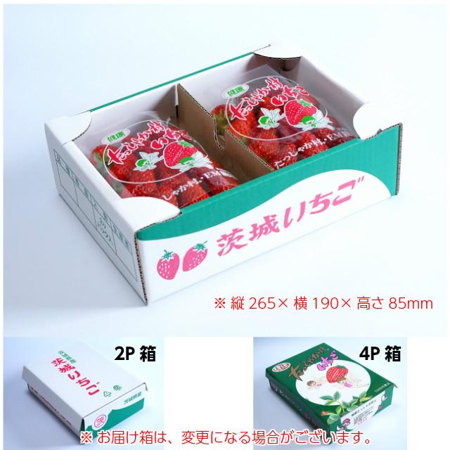 2Pの箱サイズ,縦265mm×横190mm×高さ85mm,※お届けの箱は変更になる場合がございます。お取り寄せ,ギフト