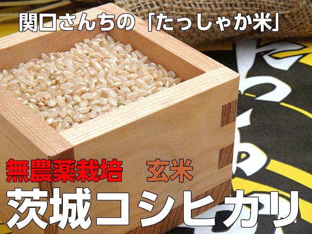 無農薬,こしひかり,コシヒカリ,米,こめ,関口さんちの新米コシヒカリ(玄米5k)