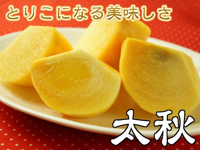 柿,とりこになる美味しさ,太秋,鈴木さんちの柿,フルーツ