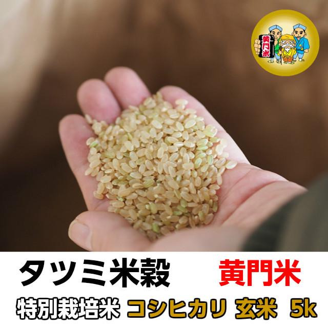 タツミ米穀,黄門米,特別栽培米コシヒカリ,玄米5kg