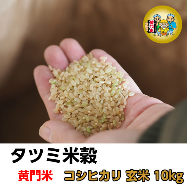 タツミ米穀,黄門米,コシヒカリ,玄米10kg