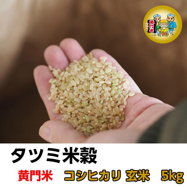 タツミ米穀,黄門米,コシヒカリ,玄米5kg