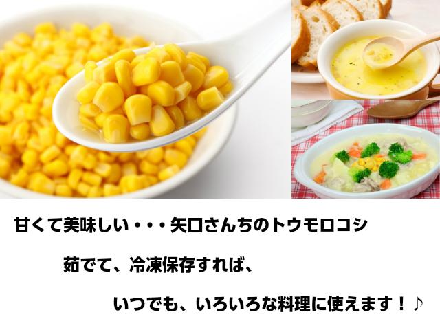 訳ありトウモロコシ 茹でて冷凍保存すれば、いつでもいろいろな料理に使えてお得です。